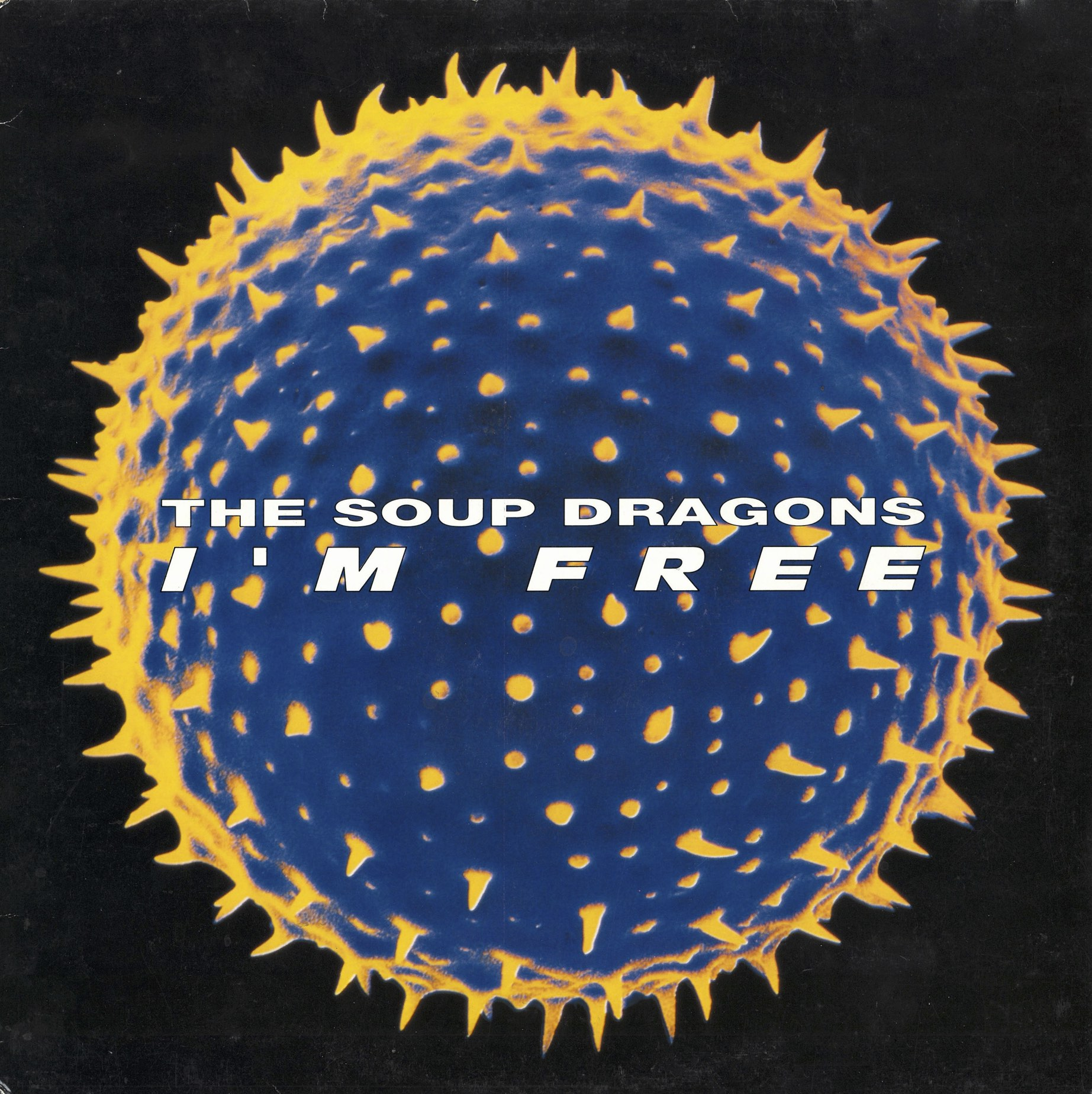 1990_The_Soup_Dragons